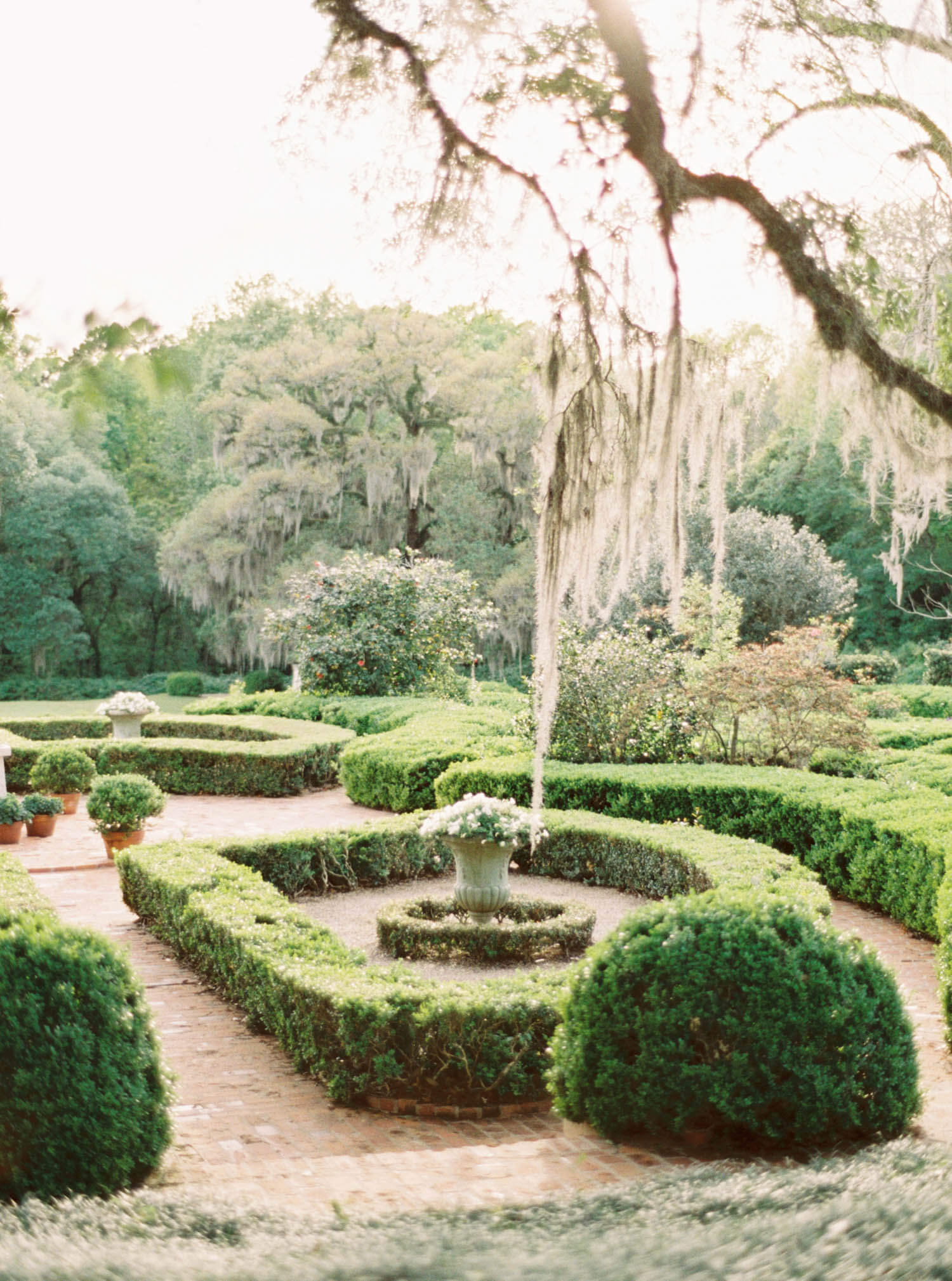 afton villa gardens engagement